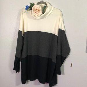 Plus size color block turtle neck sweater